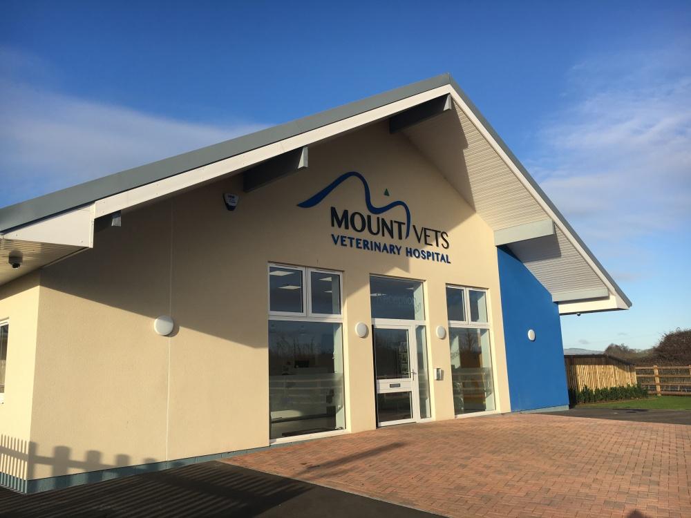 Veternary Surgery, Wellington